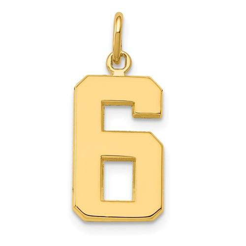 14 Karat Yellow Gold  #6  Charm 22x9mm